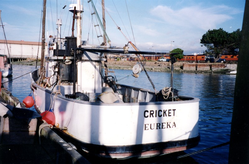 Kettenburg boat works and owners association for Fishing with crickets